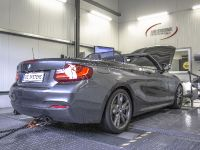 2015 DTE-Systems BMW M235i, 5 of 10