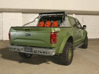 2015 Ford F-150 Halo Sandcat, 3 of 6