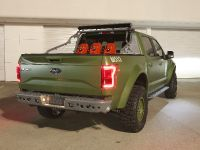 2015 Ford F-150 Halo Sandcat, 4 of 6