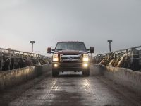 2015 Ford King Ranch Lineup, 8 of 14