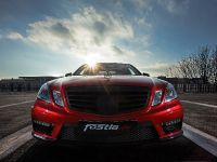 2015 Fostla Mercedes-Benz E 63 AMG W212, 6 of 15