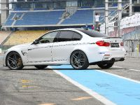 2015 G-POWER BMW M3 F80, 4 of 9