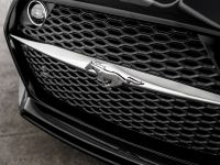 2015 GAS-Fisker Ford Mustang Rocket , 38 of 42