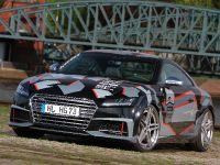 2015 HG-Motorsport Audi TTS, 1 of 12