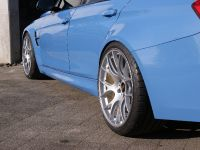 2015 Kaege BMW M3, 5 of 11