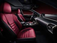 2015 Lexus NX F Sport , 5 of 5
