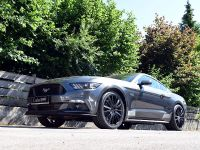 2015 Loder1899 Ford Mustang, 4 of 12