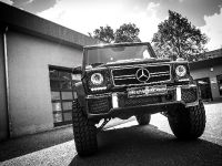 2015 Mcchip-dkr Mercedes-Benz G 63 AMG MC-800, 2 of 16