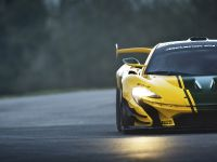 2015 McLaren P1 GTR Limited Edition, 15 of 18