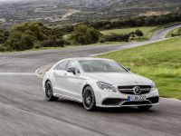 2015 Mercedes-Benz CLS and CLS Shooting Brake, 8 of 15