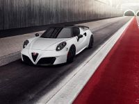 2015 Pogea Racing 4C Centurion 1 Plus , 1 of 10