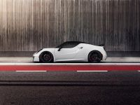 2015 Pogea Racing 4C Centurion 1 Plus , 4 of 10