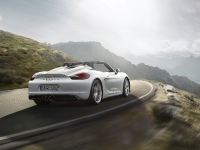 2015 Porsche Boxster Spyder , 10 of 10