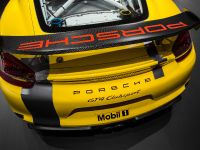 2015 Porsche Cayman GT4 Clubsport, 3 of 3