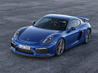 2015 Porsche Cayman GT4, 3 of 6