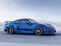 2015 Porsche Cayman GT4, 4 of 6