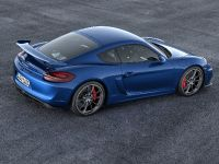 2015 Porsche Cayman GT4, 5 of 6
