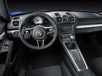 2015 Porsche Cayman GT4, 6 of 6