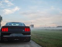 thumbnail image of 2015 Roush Ford Mustang Lineup