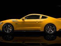2015 Saleen S302 Black Label Mustang , 3 of 28