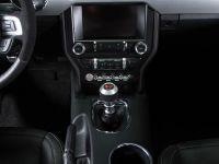 2015 Saleen S302 Black Label Mustang , 10 of 28