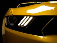 2015 Saleen S302 Black Label Mustang , 16 of 28