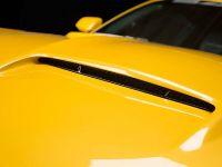 2015 Saleen S302 Black Label Mustang , 18 of 28