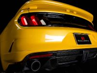 2015 Saleen S302 Black Label Mustang , 19 of 28