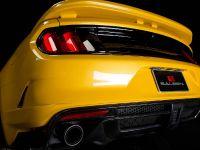 2015 Saleen S302 Black Label Mustang , 19 of 28