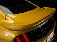 2015 Saleen S302 Black Label Mustang , 20 of 28