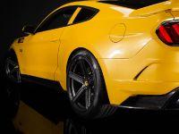 2015 Saleen S302 Black Label Mustang , 26 of 28