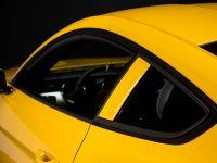 2015 Saleen S302 Black Label Mustang , 27 of 28