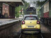 2015 smart forrail, 14 of 19