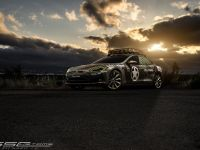 2015 SS Customs Tesla Model S TeslaVets, 1 of 3