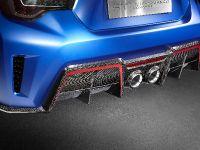 2015 Subaru STI Performance Concept, 17 of 19