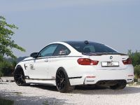 2015 TVW Car Design BMW M4 DTM Champion Edition, 4 of 13