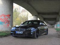 2015 VOS BMW M 550d, 3 of 10