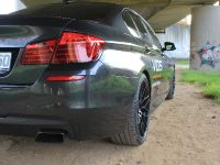 2015 VOS BMW M 550d, 5 of 10