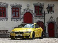 2015 VOS BMW M4, 4 of 18