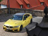 2015 VOS BMW M4, 5 of 18