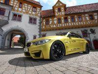 2015 VOS BMW M4, 8 of 18