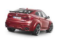 2016 AC Schnitzer BMW X6 FALCON, 10 of 21