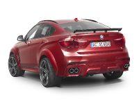 2016 AC Schnitzer BMW X6 FALCON, 11 of 21