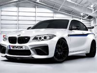 2016 Alpha-N Performance BMW M2 F87, 2 of 6