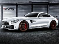 2016 Alpha-N Performance Mercedes-AMG GT R , 3 of 5
