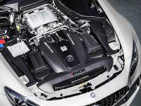 2016 Alpha-N Performance Mercedes-AMG GT R , 5 of 5