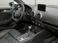 2016 B-B Audi RS3 8V , 6 of 10