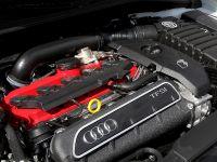 2016 B-B Audi RS3 8V , 10 of 10
