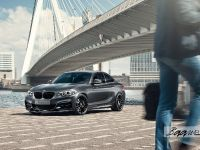 2016 BMW M235i Track Edition, 1 of 7