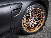 2016 BMW M4 GTS , 27 of 37